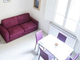 Porcellino apartment in Duomo with WiFi & airconditioning (warm / koud)., Florence