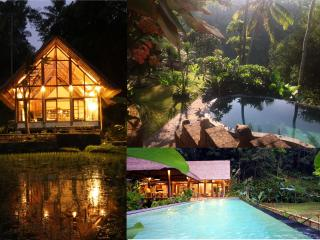 Constant Heaven-2 fabulous villas linked by stairs, Ubud
