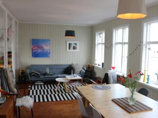 Gorgeous Downtown Apartment In Historical Building, Reykjavik