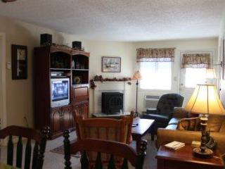 Convenient 2BR condo with fireplace, TV/DVD - B1 126B