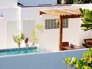 Casa Naaj 3 - Super Central Loft, Terrace, Pool, Playa del Carmen