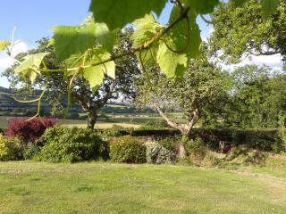 Orchard Cabin, Musbury