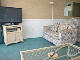 SEA WORTHY 2 BEDROOM OCEAN FRONT CONDO, Garden City Beach