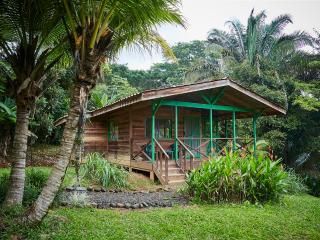 Cabina Lagunas in the jungle, breakfast included!, Dominical