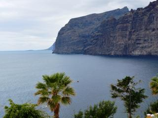 apartament with a beautifull view in los gigantes.
