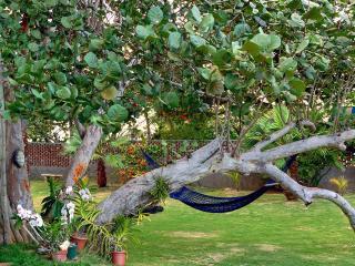 Sea Grapes on Discovery Bay, Sleeps 12