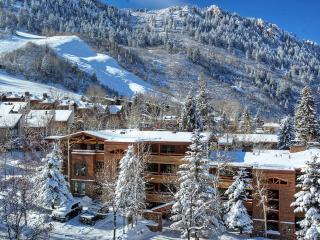 Fasching Haus 10, Sleeps 8, Aspen