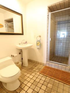 3rd bathroom in ground floor