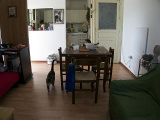 Cucina/soggiorno (piano terra) Kitchen / living room (ground floor)
