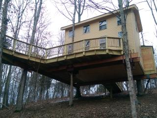 KY climber Tree House, Germantown