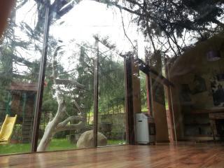 Real del Monte. Cabin.  Loft.  Magical Town., Mineral del Monte