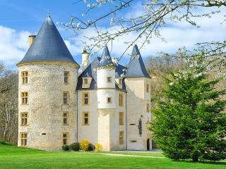 Chateau De Montpezat, Saint-Martory