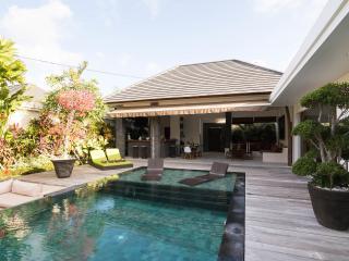 Beautiful Modern Villa Seminyak