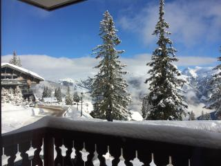 Courchevel 1850 Chalet  LE BACHAL