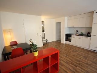 ZH Badenerstrasse V - HITrental Apartment, Prichovice
