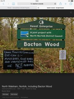 Nearby Bacton Woods