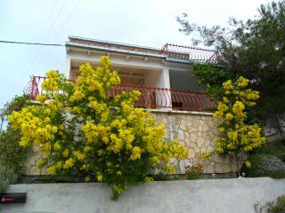 Danica A1(4) - Cove Rukavac