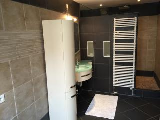 Large bathroom with a big italian style shower