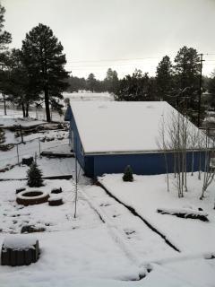 Beautiful winter snow . . .