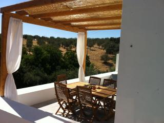 Holiday home in Alentejo countryside, Portugal