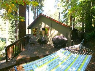 Stairway to Heaven is a very sweet cabin in the redwoods! 3 nights for 2!, Guerneville