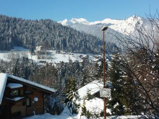 Apartment La Vallee Verte - Quickest way to the Portes du Soleil ski area