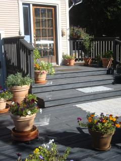 Part Of Large Back Deck With Potted Herbs And Flowers  Barbeque  Table And Chairs