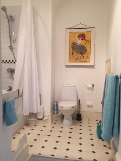 Well finished bathroom with shower over tub