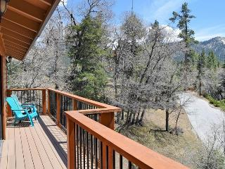 Mountain View Lodge: Near Bear Mtn! Pool Table!, Big Bear Lake