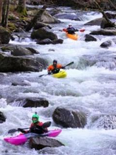 Great White Water kayaking nearby