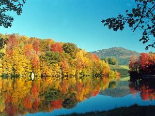Wildcat Lake is 2 miles away. Enjoy fishing,
