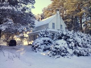Adirondacks Family Holiday Chalet, Saranac Lake