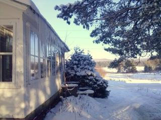 Adirondacks Family Holiday Chalet