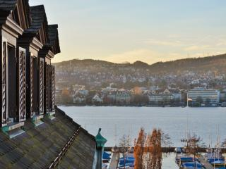 Central, tasteful, lake view: Zurich's best flat!, Zúrich