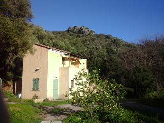 A CASA DI L'ALIVU Studio Castagnu