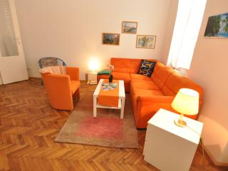 Apartment City / Universität/günstig/komfortable, Viena