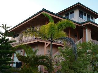 Nice, Big House near Kehena Beach/Kapoho