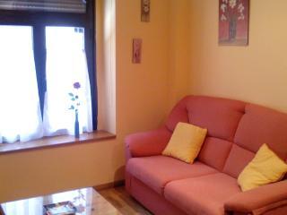 Apartamento centrico 1 habitacion + sofa cama, Astorga