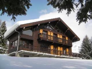 Chamonix - Argentière - Grand chalet proche pistes