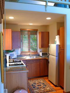 Fully equipped kitchen with all major, full size, appliances.