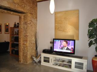 SALON T.V MULTICANAL
