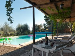 Casa Nenita with private pool, Wifi and A/C for 12, Capannori