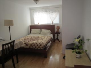 fully furnished bachelor minutes from downtown