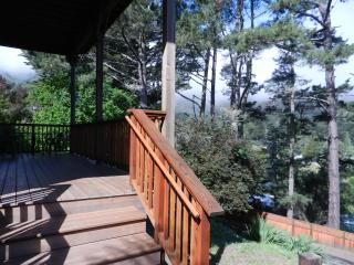 1b Retreat, Woodland Vus, Hike2 2Beachs, 10min 2sf, Mill Valley
