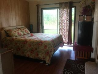 2 bedroom Hilo/ Hamakua $79.00 ( on Parle Francias