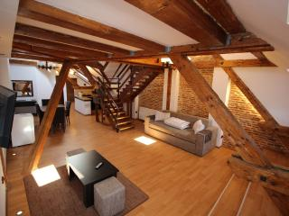 Luxury Studio in Main Square Brasov