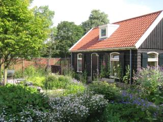 Romantic quiet  house with garden near Centre Amsterdam