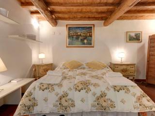 ancient studio apartment in Oltrarno area, Florenz