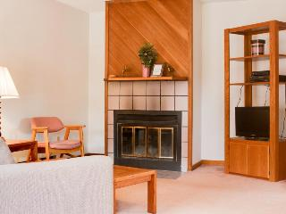 Dog-friendly w/ fireplace, private sauna, mountain views, minutes to the slopes!