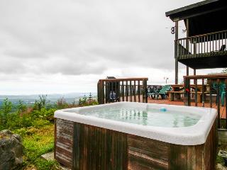 Gorgeous, dog-friendly mountaintop water views with a private hot tub!